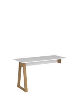 Neptune tabletop desk