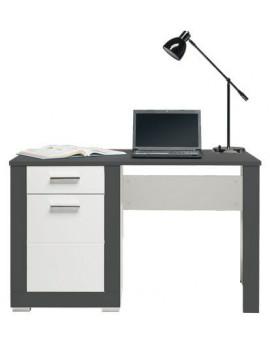 Gray desk GR-12