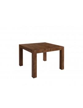 Kaspian stół 110-100